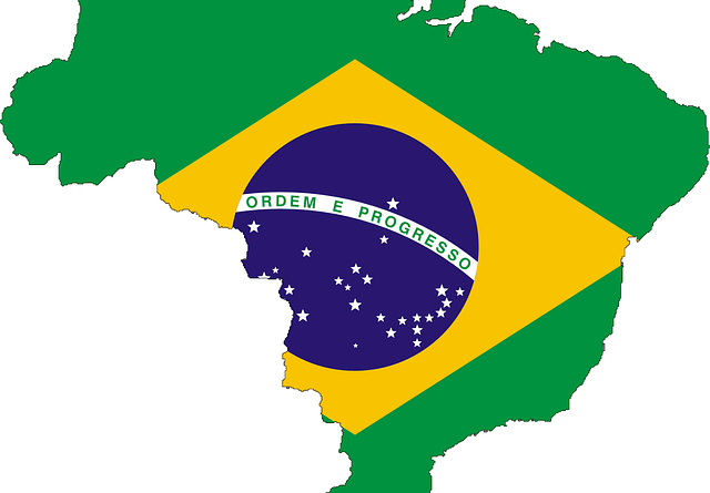 How Long Does It Take To Get A Visa For Brazil